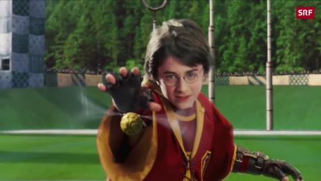 Video «Schweizer spielen Quidditch» abspielen
