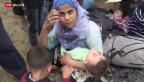 Video «FOKUS: Flüchtlings-Chaos an mazedonischer Grenze» abspielen