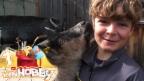 Video «Andrin hilft gerne auf dem Bauernhof» abspielen