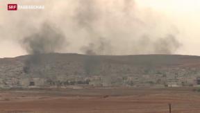 Video «Kobane ist so leicht nicht einzunehmen» abspielen
