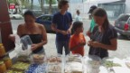 Video «FOKUS: Schweizer wollen Venezuela verlassen» abspielen