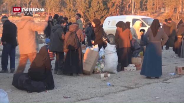 Video «Evakuierung von Aleppo unterbrochen» abspielen