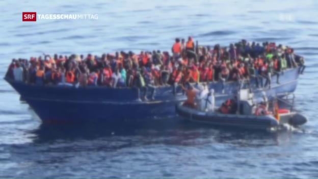 Video «Wie weiter mit Flüchtlingen aus Libyen?» abspielen
