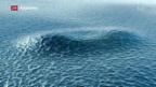 Video «Schweizer Tsunami-Erkenntnisse» abspielen