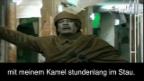 Video «Gaddafi - «Stau nervt!»» abspielen