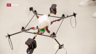 Video «FOKUS: Drohneneldorado Schweiz» abspielen