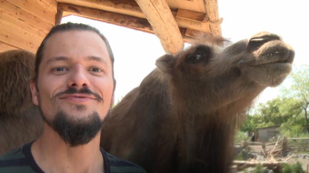 Video «Das Kamel (11)» abspielen