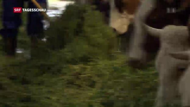 Video «Auch die Bauern sollen Federn lassen» abspielen