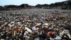 Video «Sand-Hunger: Auf der Suche nach Alternativen» abspielen