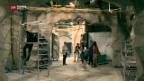 Video «Grösstes Süsswasser-Aquarium von Europa» abspielen
