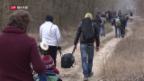 Video «FOKUS: Kosovo – unabhängig, aber gescheitert?» abspielen