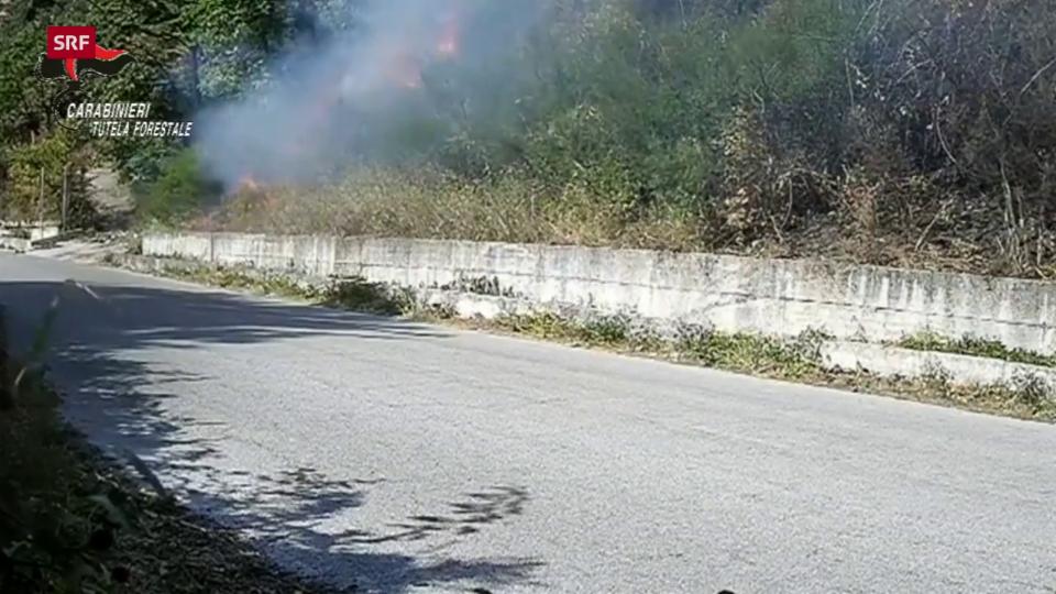 Ein Mann zündet Büsche an einem Strassenrand an (Sarno, Provinz Salerno, 17.8.20)