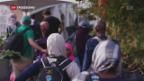 Video «Trump treibt Muslime nach Kanada» abspielen