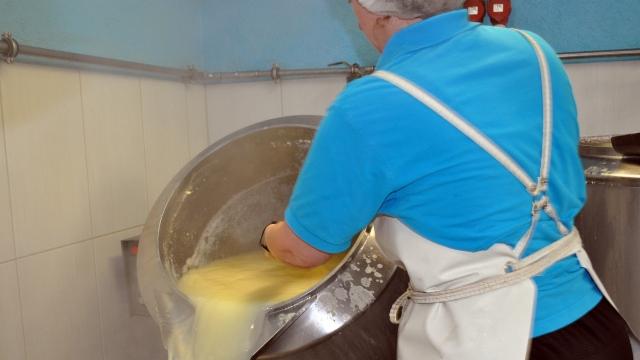 Tofu-Produktion auf dem Bio-Wäberhof