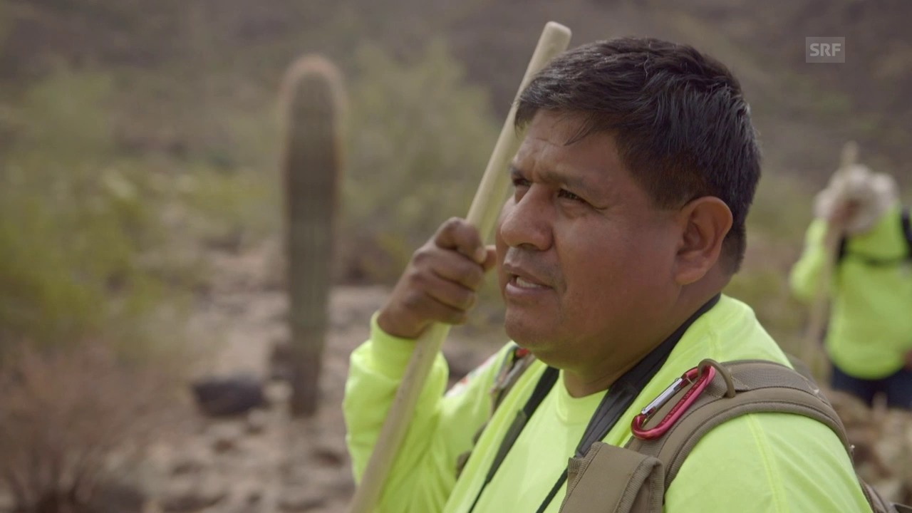 Freiwillige suchen in der Wüste Arizonas nach Überlebenden