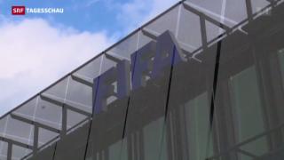 Video «WM 2006 in Deutschland manipuliert?» abspielen