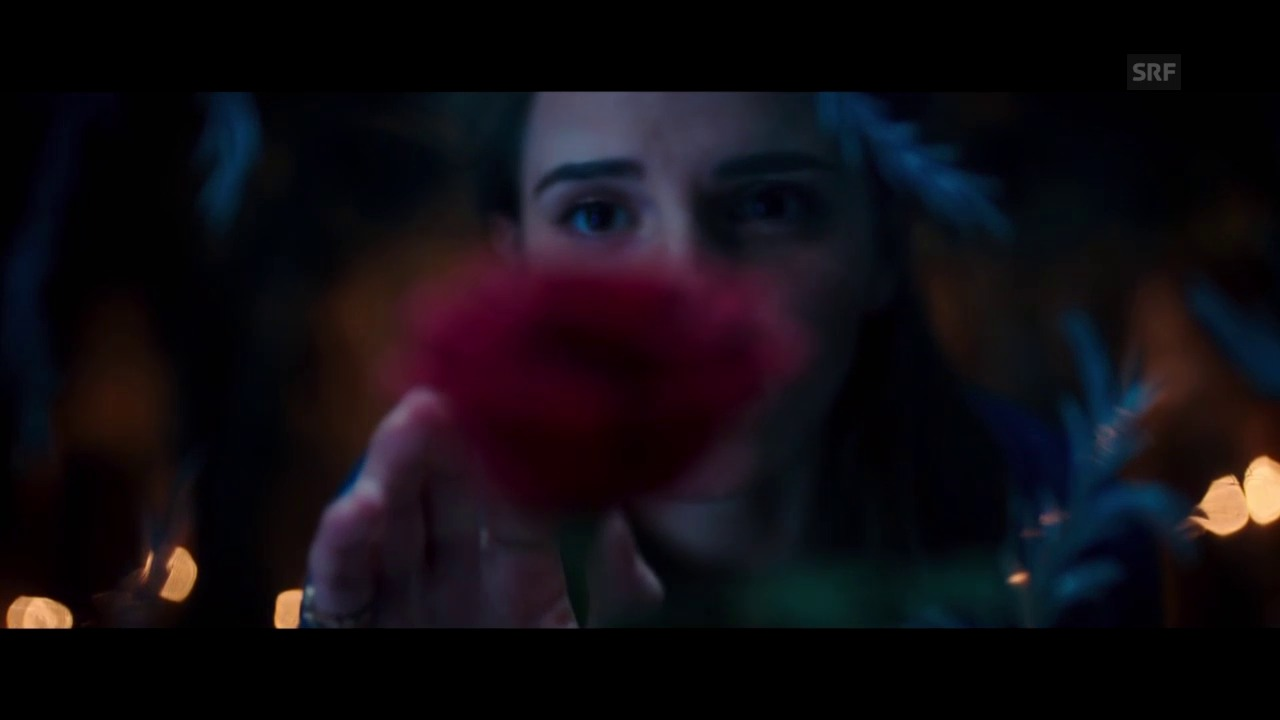 «Beauty and the Beast»
