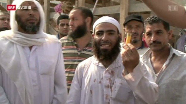 Video «Muslimbruderschaft ist grosser Verlierer» abspielen