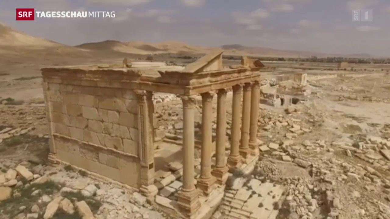 Hoffnung für das Weltkulturerbe von Palmyra