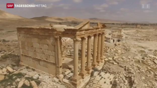 Video «Hoffnung für das Weltkulturerbe von Palmyra» abspielen