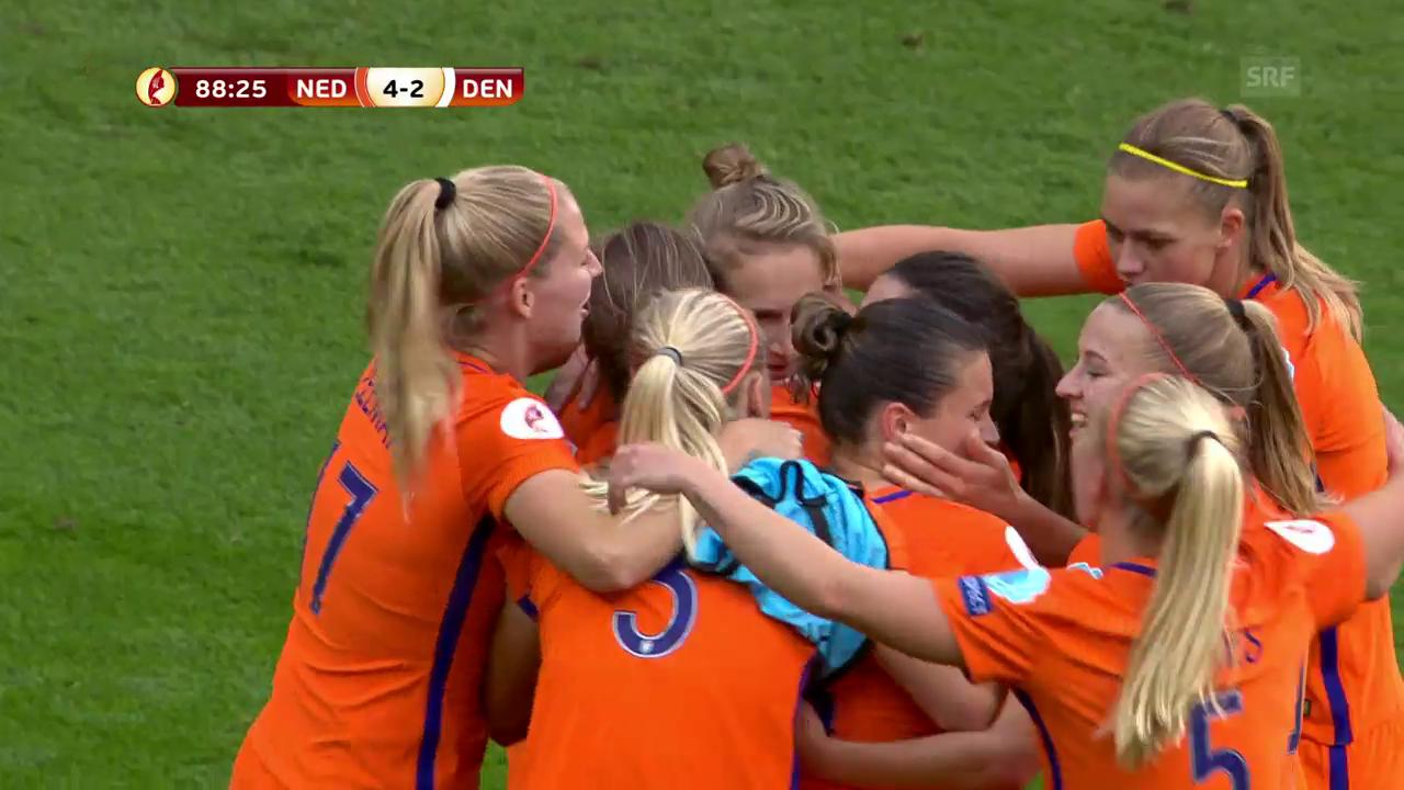 Die Tore bei Niederlande - Dänemark