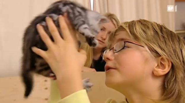 Video «Haustiere vermindern das Allergierisiko» abspielen