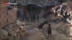 Video «Rohingya-Konflikt eskaliert erneut» abspielen