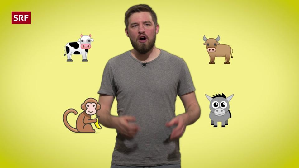 Tiere in der Sprache – Sie sind überall