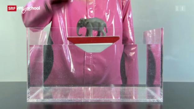 Video ««Achtung! Experiment: Die Wasserwaage»» abspielen