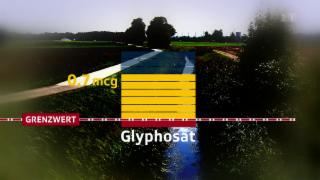 Video «Gift in den Bächen: Streit um Pestizid-Grenzwerte » abspielen