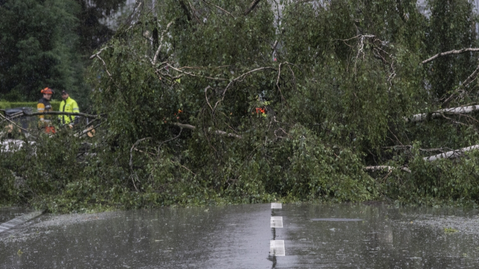 Umgestürzte Bäume, Wasser im Keller: Während Tagen sind Feuerwehrleute im Einsatz. Die Mehrheit von ihnen neben dem Job.