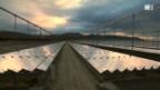 Video «Schweizer Solarstrom aus der spanischen Wüste» abspielen