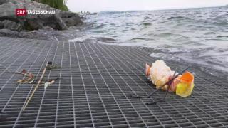 Video «Plastikmüll in der Schweiz» abspielen