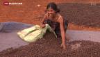 Video «Erklärungen zur anhaltenden Rohstoffkrise» abspielen