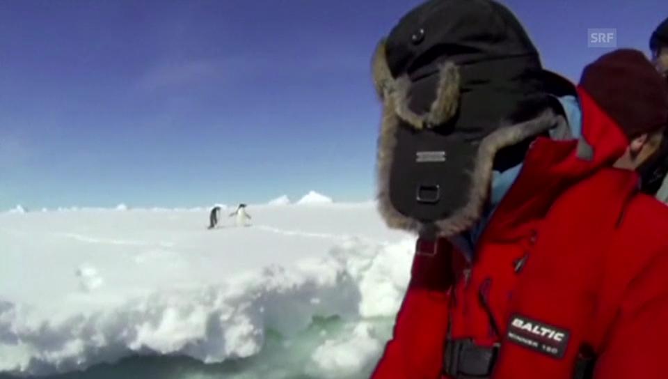 Forschungsschiff sitzt in Antarktis fest