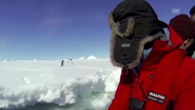 Video «Forschungsschiff sitzt in Antarktis fest» abspielen