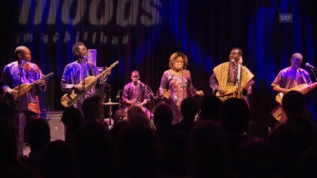 Video «Bassekou Kouyaté mit der Band Ngoni Ba» abspielen