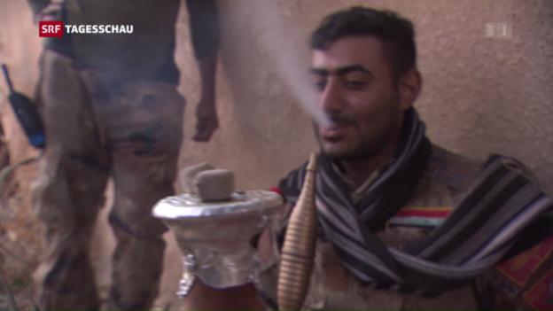 Video «Mossul weiter umkämpft – Reportage aus Bartella» abspielen