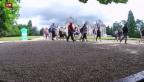 Video «Kommerz im Schloss: Wie Schlossherren mit Touristen Geld machen» abspielen