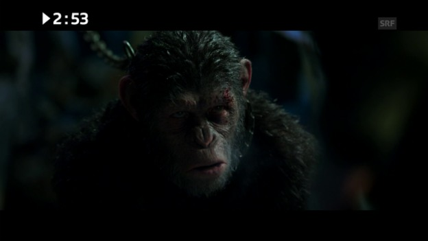 Video «Filmstart diese Woche: «War for the Planet of the Apes»» abspielen