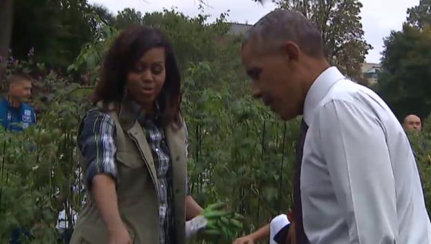 Video «Obamas letzte Ernte» abspielen