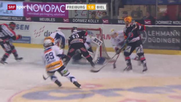Video «Eishockey: NLA Zusammenfassung Freiburg - Biel («sportaktuell»)» abspielen