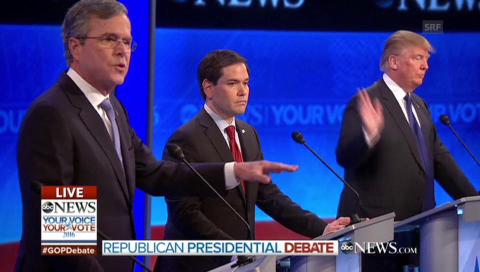Bush gegen Trump (englisch)