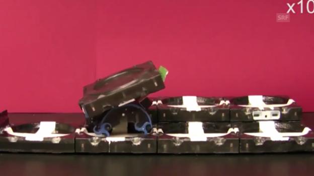Video «Roboter reagieren auf veränderte Situationen (Science/AAAS)» abspielen