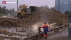 Video «Frauenfeld im Zuckerrausch» abspielen