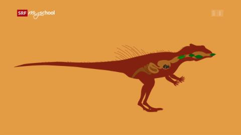 Ralph und die Dinosaurier: Yinlong (25/26)