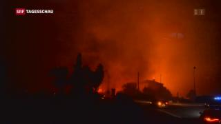 Video «Der Süden Europas brennt weiter» abspielen