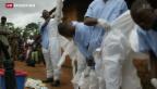 Video «Westafrika zittert vor dem Ebola-Virus» abspielen