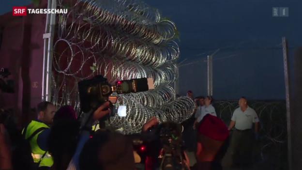 Video «Ungarn schliesst die Grenze» abspielen