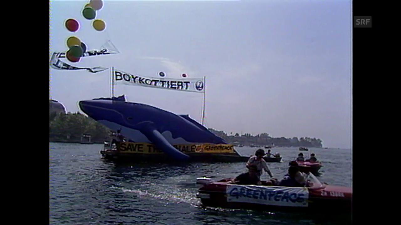 Aktion gegen Walfang auf dem Zürichsee Juni 1985